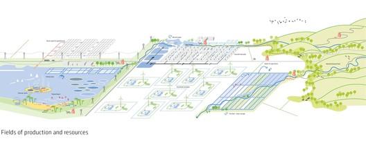 production fields