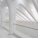Inside Santiago Calatrava's WTC Transportation Hub in New York © Michael Muraz