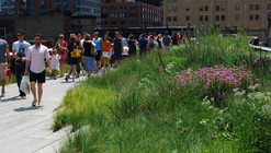 The High Line Frenzy