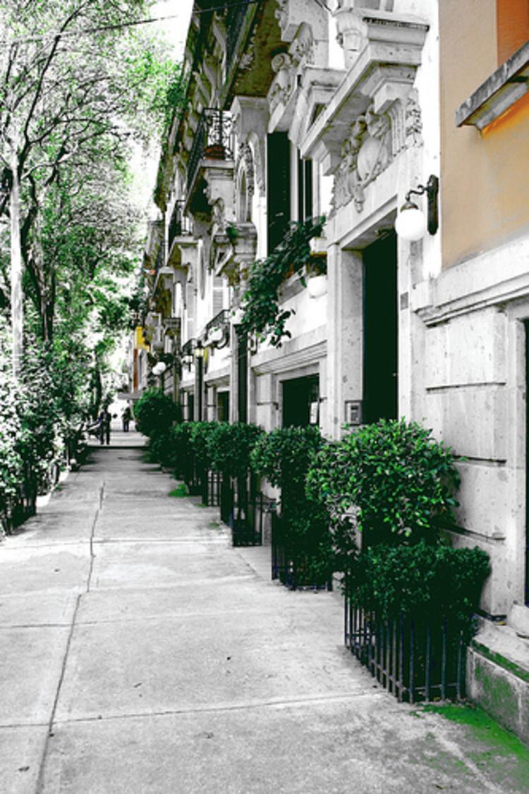 Calle de Colima en la Colonia Roma Norte. Image vía Wikipedia