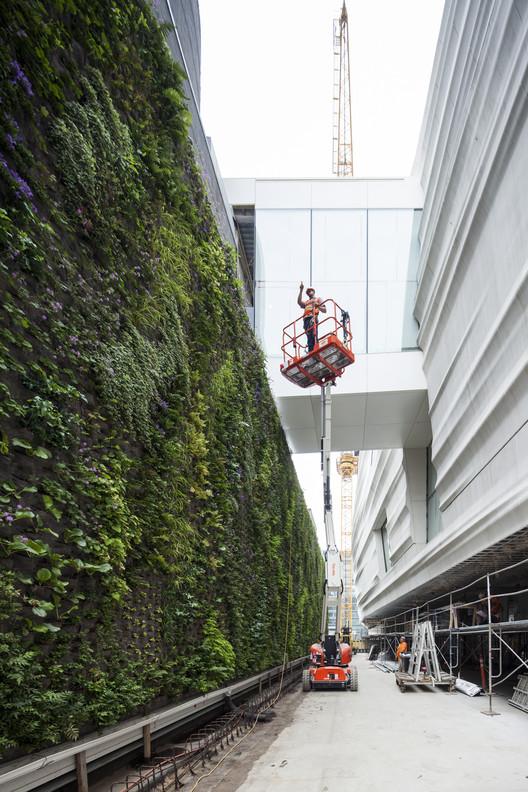 Living Wall under construction. Image © Henrik Kam, courtesy of SFMOMA.
