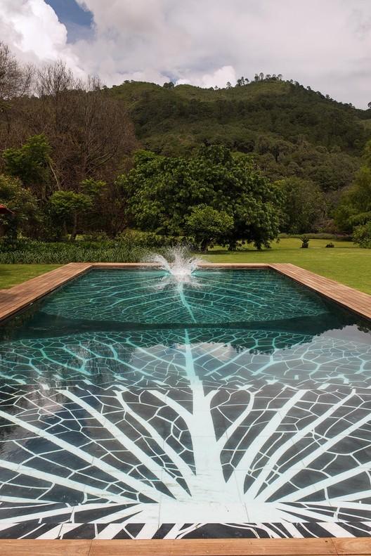 Lotus, México. Image © Jaime Navarro