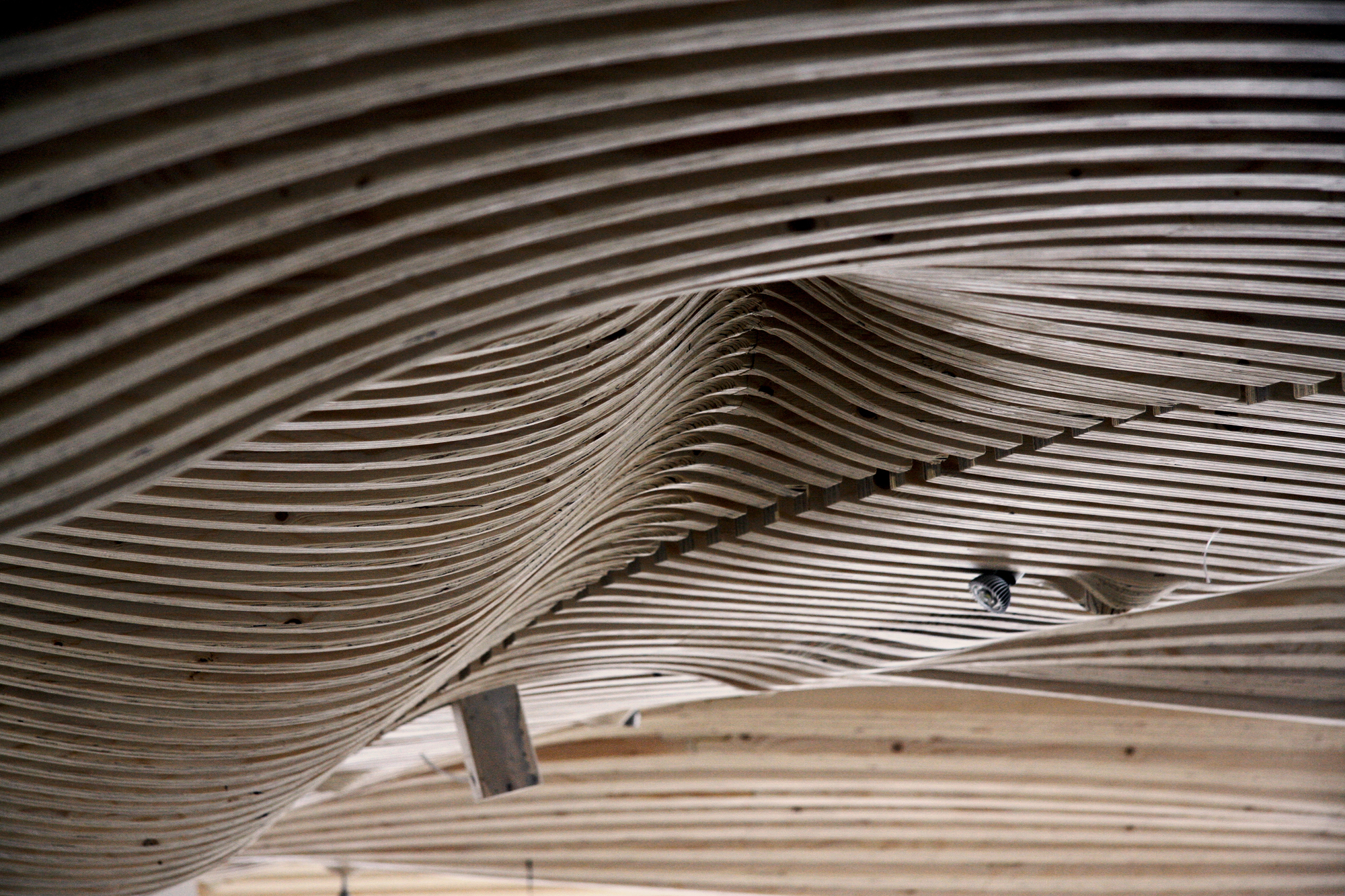 gallery of one main office renovation decoi architects   14