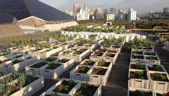 El mall que en su techo tiene un huerto y reaprovecha las sobras de su patio de comida