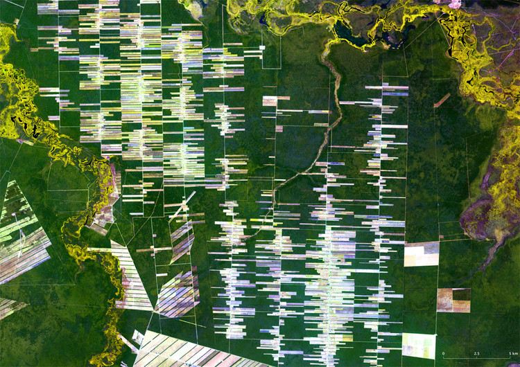 The Project of a Collective Line, The Project of a Collective Line: Santa Cruz in Bolivia is an agro-export region dominated by transnational corporations. Image Courtesy of USGS