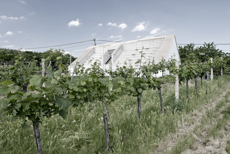 Weinblich / March Gut, © archipicture