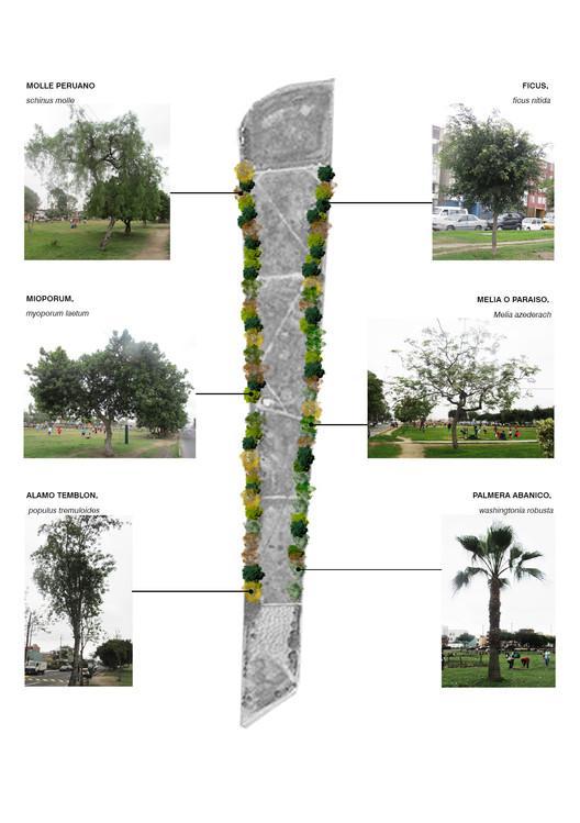 Vegetación pampa urbana Los Próceres