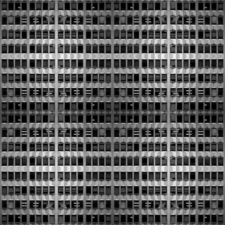 © Pollo Lavín