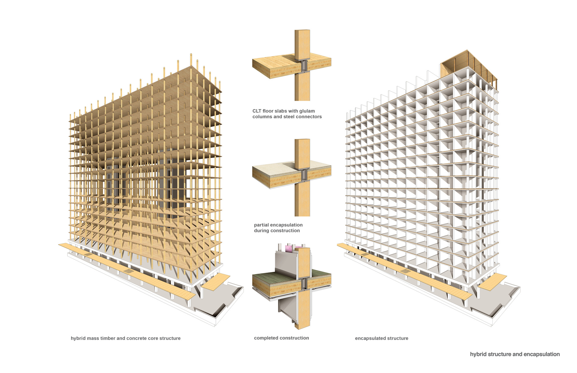 Gallery Of Construction Of The World S Tallest Timber