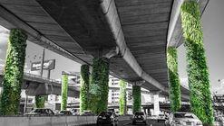 Vía Verde: Un nuevo debate de sustentabilidad en México