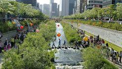 Ocho ejemplos de que es posible descontaminar los ríos urbanos