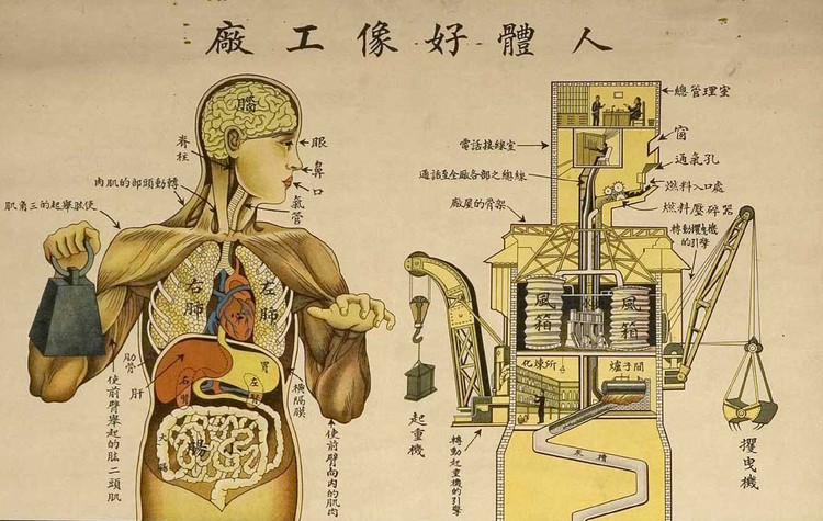 "Chinese public health poster depicting the body as a machine (1930). Image Courtesy of ""Are We Human"" / 3. Istanbul Tasarim Bienali"