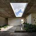 Planta Hidropónica Next / CC Arquitectos