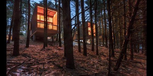 Whitetail Woods Regional Park Camper Cabins | Whitetail Woods Regional Park, Farmington, Minnesota | 2014. Cortesia de The Chicago Athenaeum