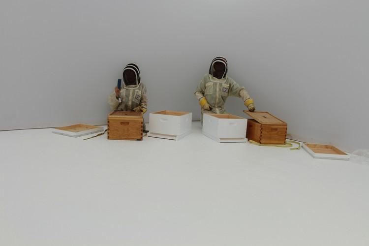 Instalación de la colmena de abeja de la miel y el monitoreo en el entorno del Colmenar Sintético. Imagen © The Mediated Matter Group