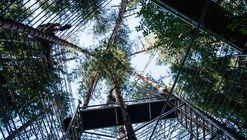 Templo del bosque / Marco Casagrande