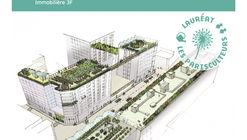 Paris anuncia 33 proyectos para crear 100 hectáreas verdes en azoteas y fachadas
