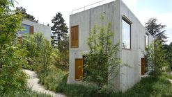 Two-familiy Apartment Houses  / Staehelin Meyer Architekten