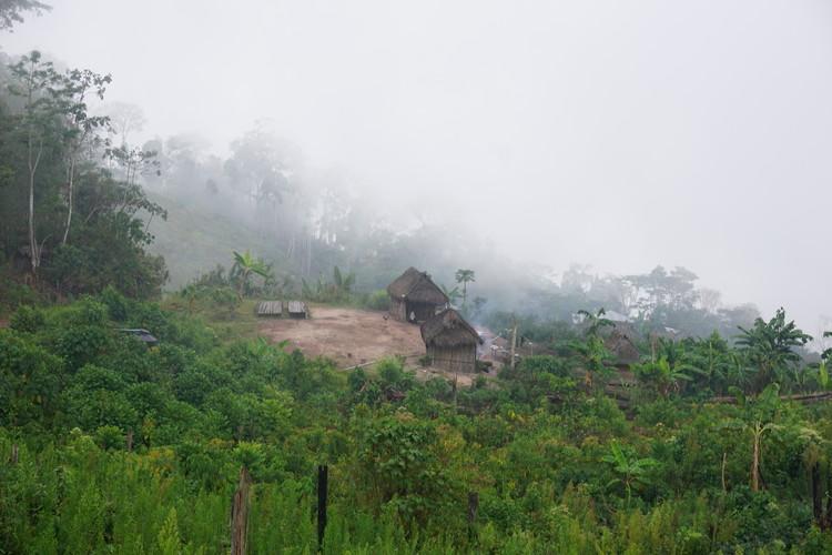 Arquitectos peruanos buscan aprender de las selvas del mundo: un viaje por Indonesia, Camerún, Honduras y Perú, Cortesía de Construye Identidad
