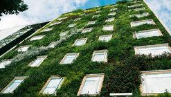 Curso profesional de diseño y construcción de jardines verticales en Santiago