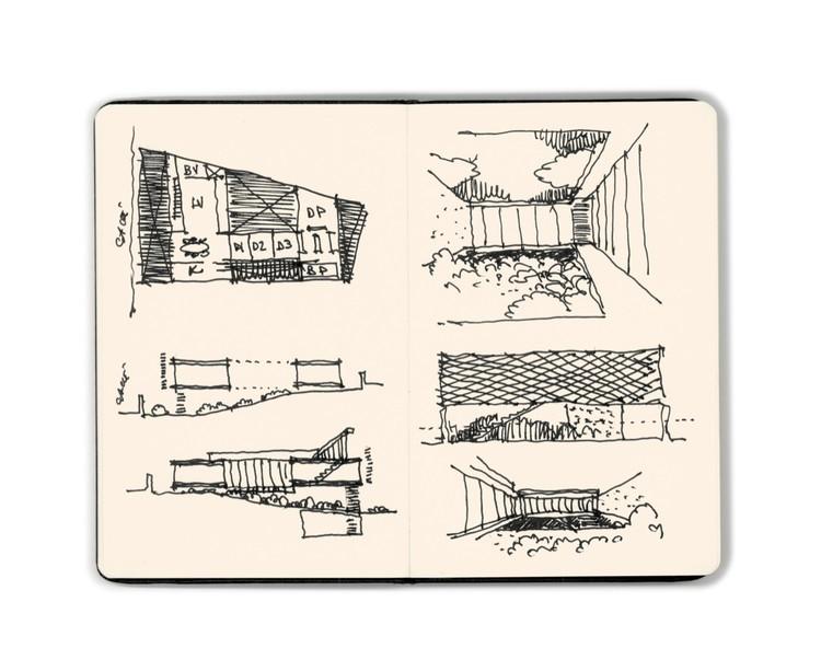 Dibujo Felipe Assadi