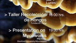 Phil Ross: Presentation on Mycoworks