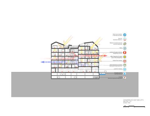 Section C-D