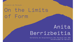 Proyecto de Paisaje: on the limits of form