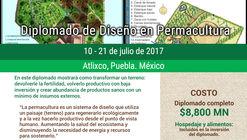 Diplomado de diseño en Permacultura