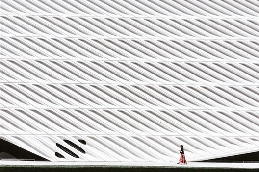 © Xiaoyang Wang. Image Courtesy of IPPAWARDS