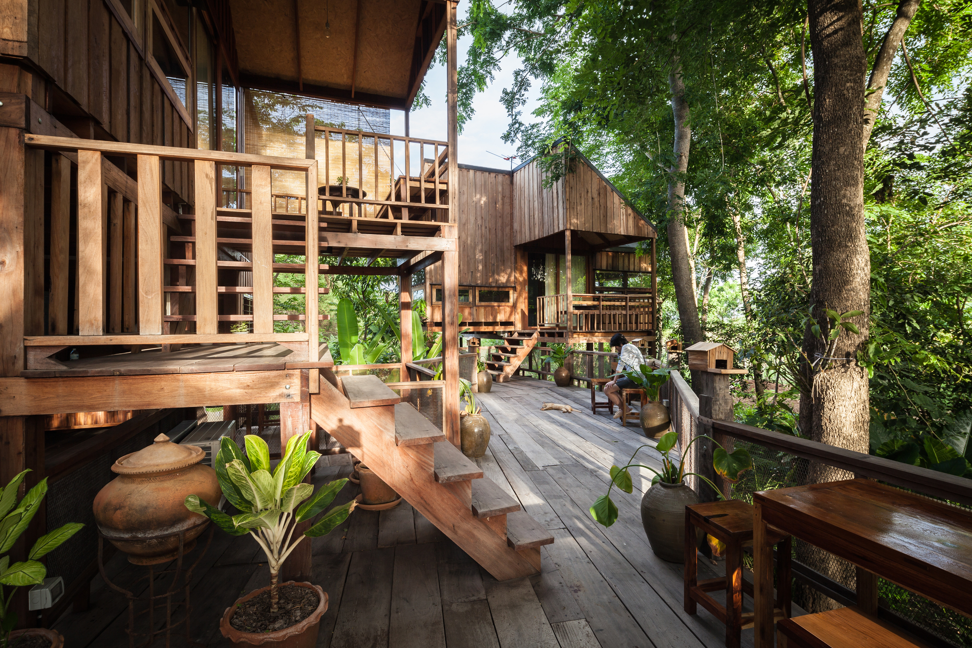 Forest house studio miti archdaily for Forest house