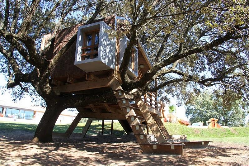 Casa na árvore enraizada / Urbanarbolismo, © Urbanarbolismo