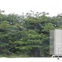 Corte Fotomontagem