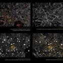 Escala Territorial, Pontos Estratégicos,Derivas Urbanas e Urbanduto