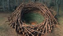 Arte e Arquitetura: Um ninho de 80 toneladas