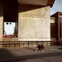 The High Line, Diller Scofidio + Renfro, New York / © Anna di Prospero