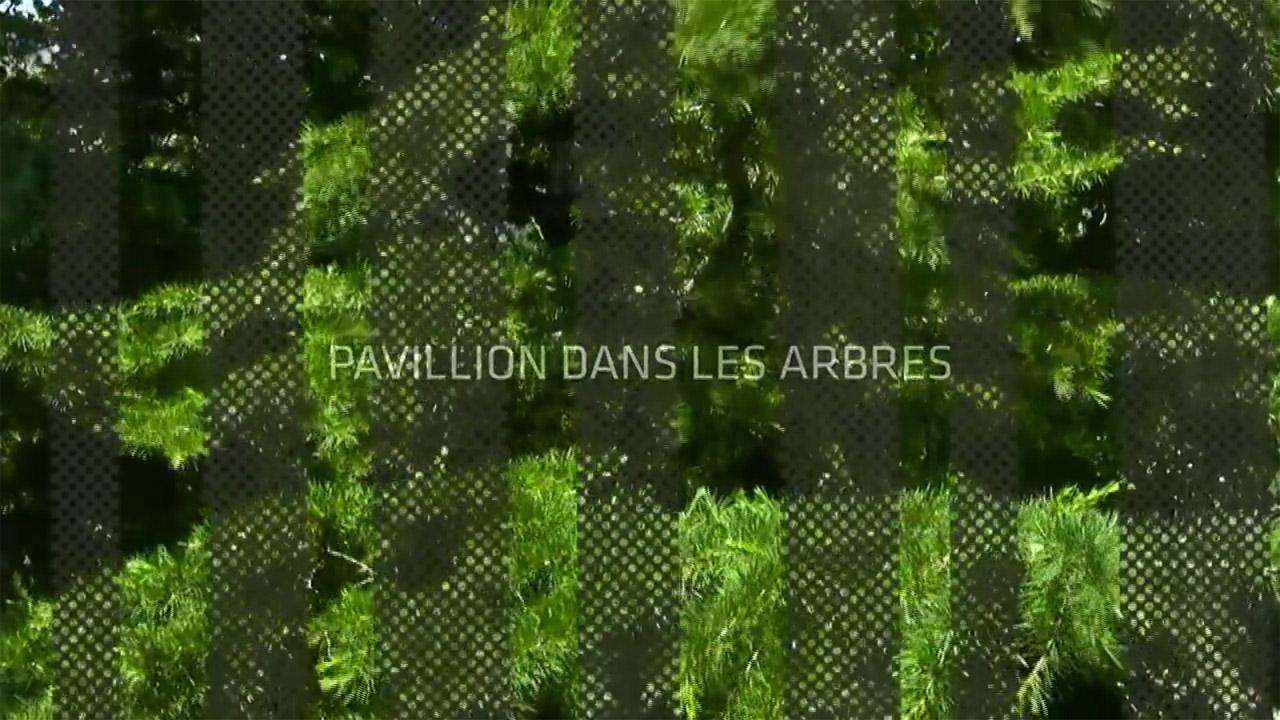 Vídeo: Pavillion Dans Les Arbres , Imagem do vídeo