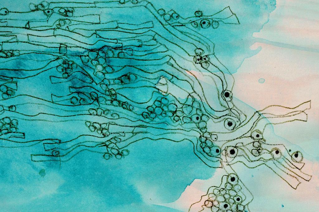 Frank Gehry desenhou tapeçarias para empresa portuguesa, © DR