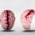 O que você tem na cabeça? © Carla Pires de Carvalho Fernande