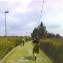 Caminho para bicicletas entre hortas