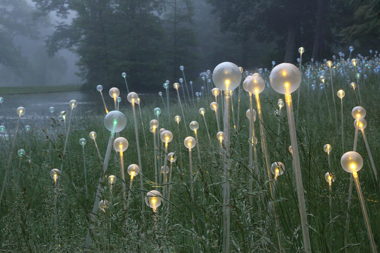 Deslumbrante instalação de iluminação em Longwood Gardens / Bruce Munro , Cortesia de Bruce Munro