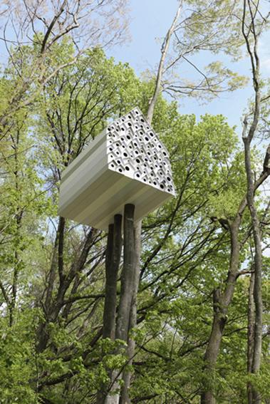 Casa da Árvore / Nendo, © Masaya Yoshimura