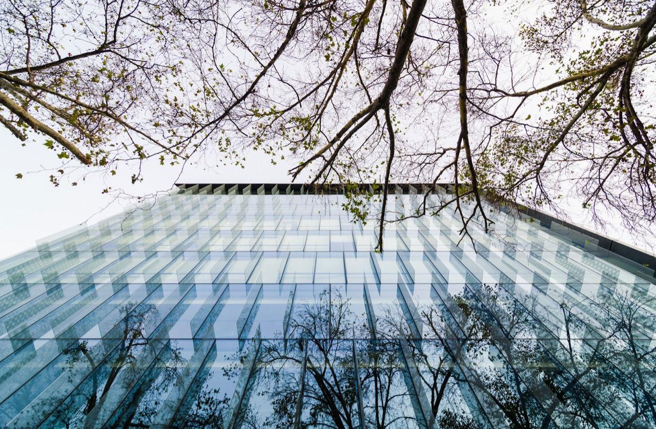 Gallery Of Ombu Building Mas Fernandez Architects 2
