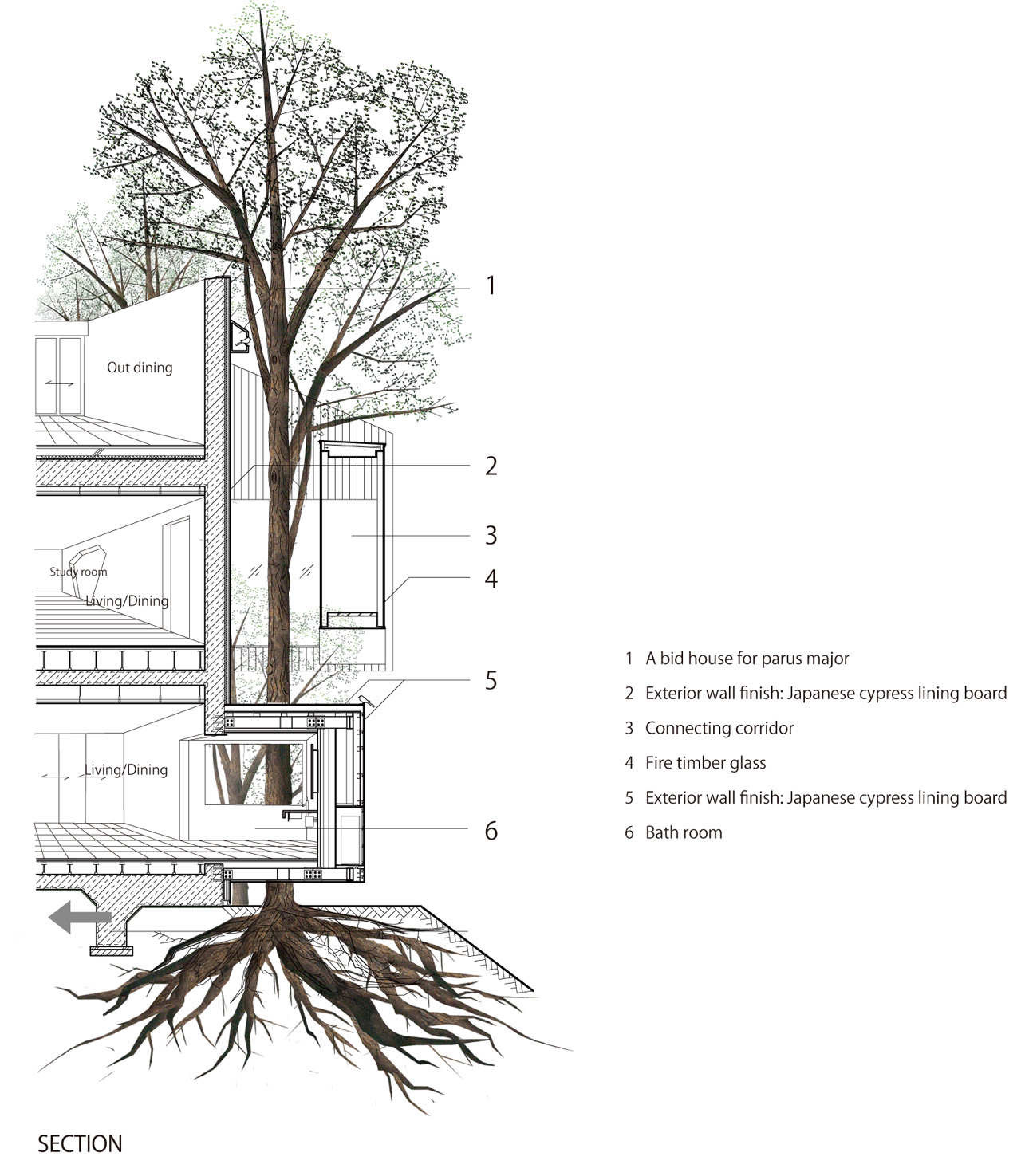 Gallery of dancing trees singing birds hiroshi nakamura for Online architecture drawing