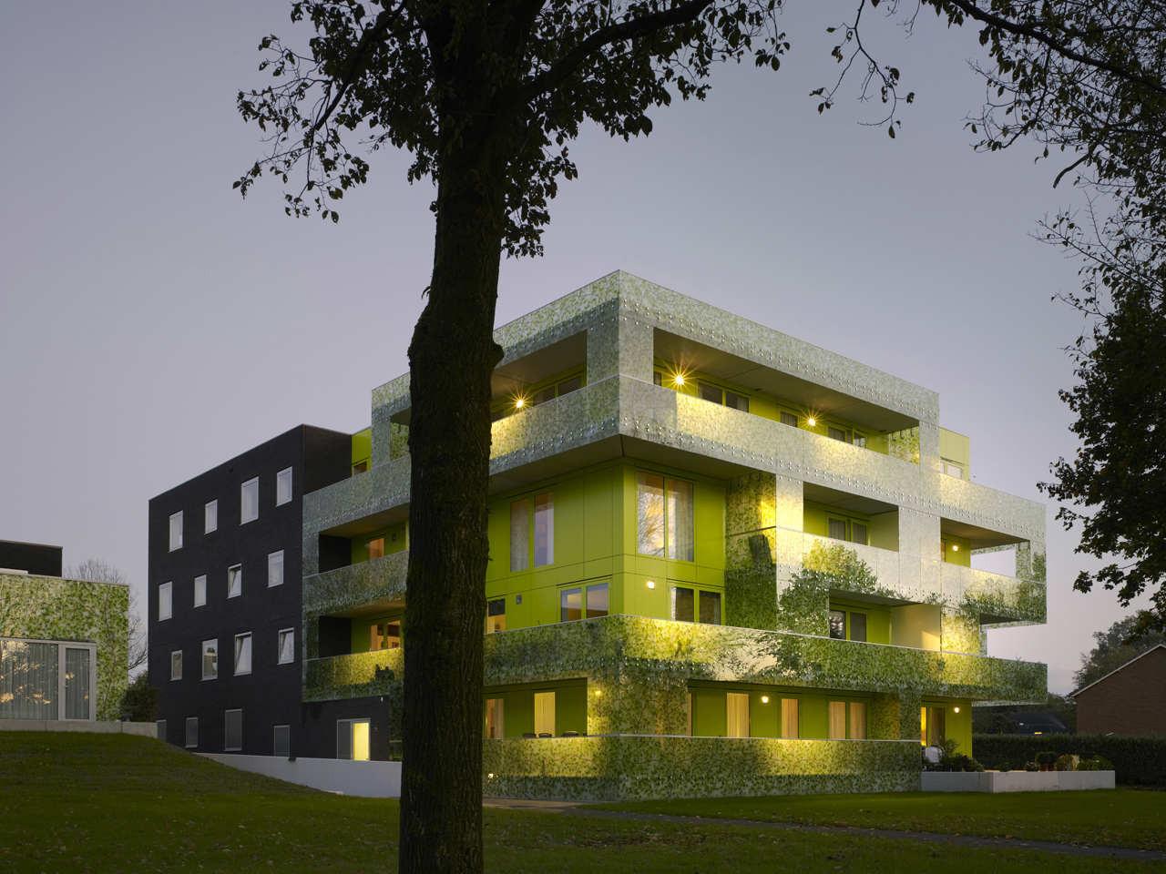Gingko Project / Casanova + Hernandez Architects, © Christian Richters
