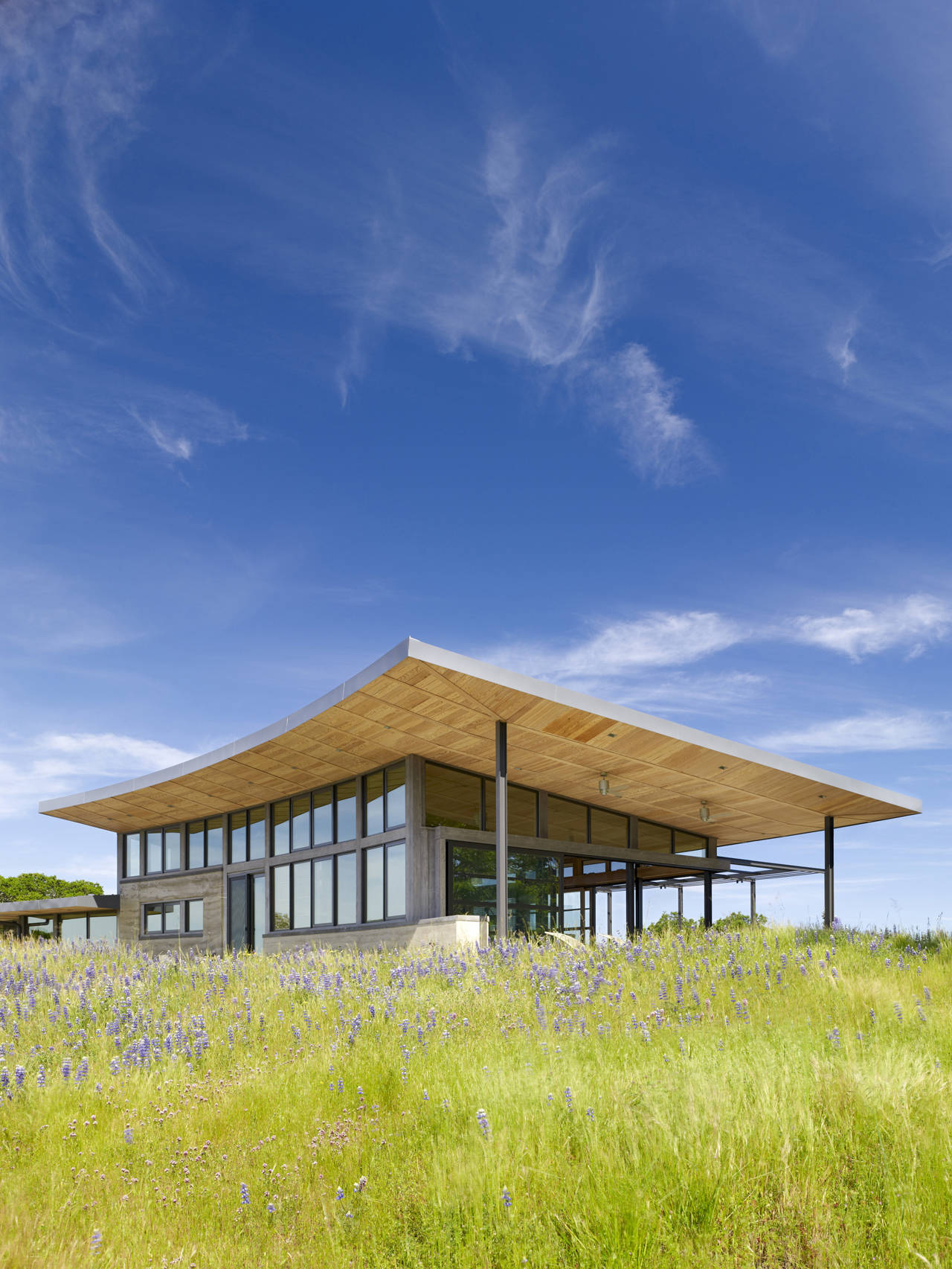 Caterpillar House / Feldman Architecture, © Joe Fletcher