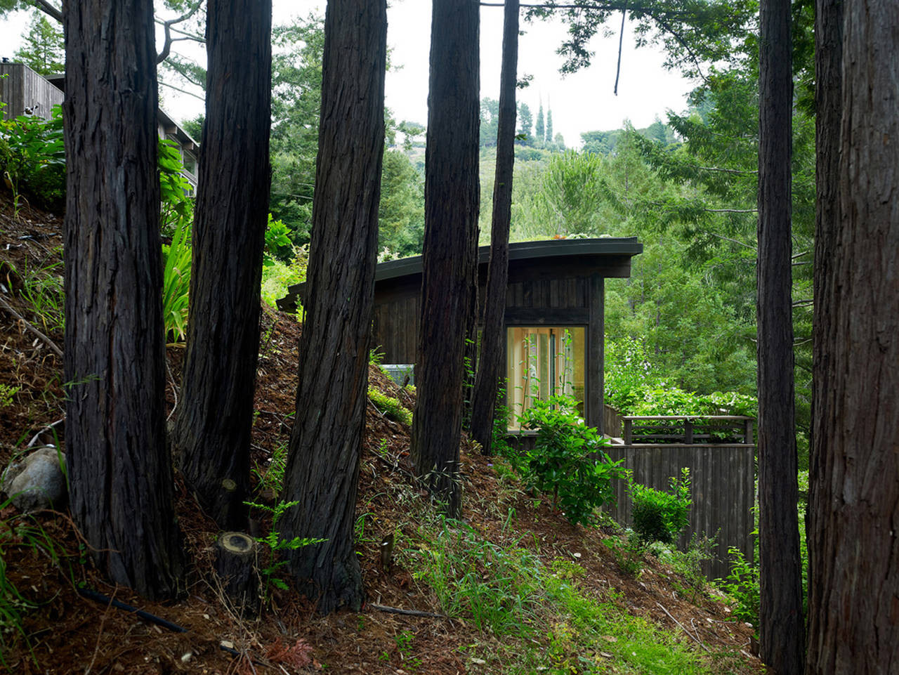 Gallery of mill valley cabins feldman architecture 2 for Mill valley architects