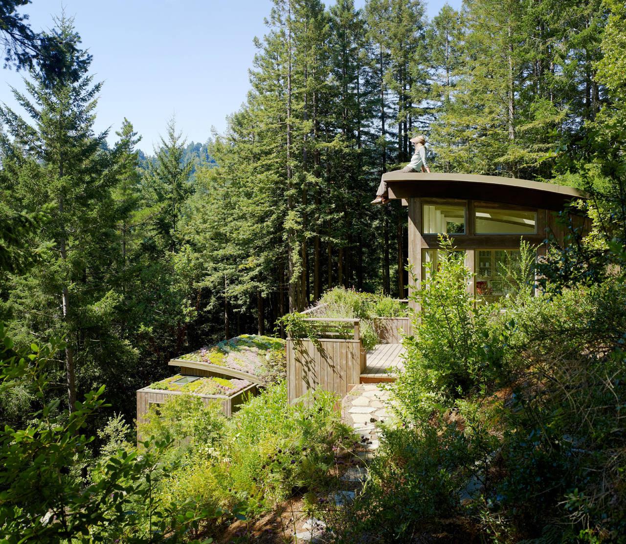 Mill Valley Cabins / Feldman Architecture, © Joe Fletcher