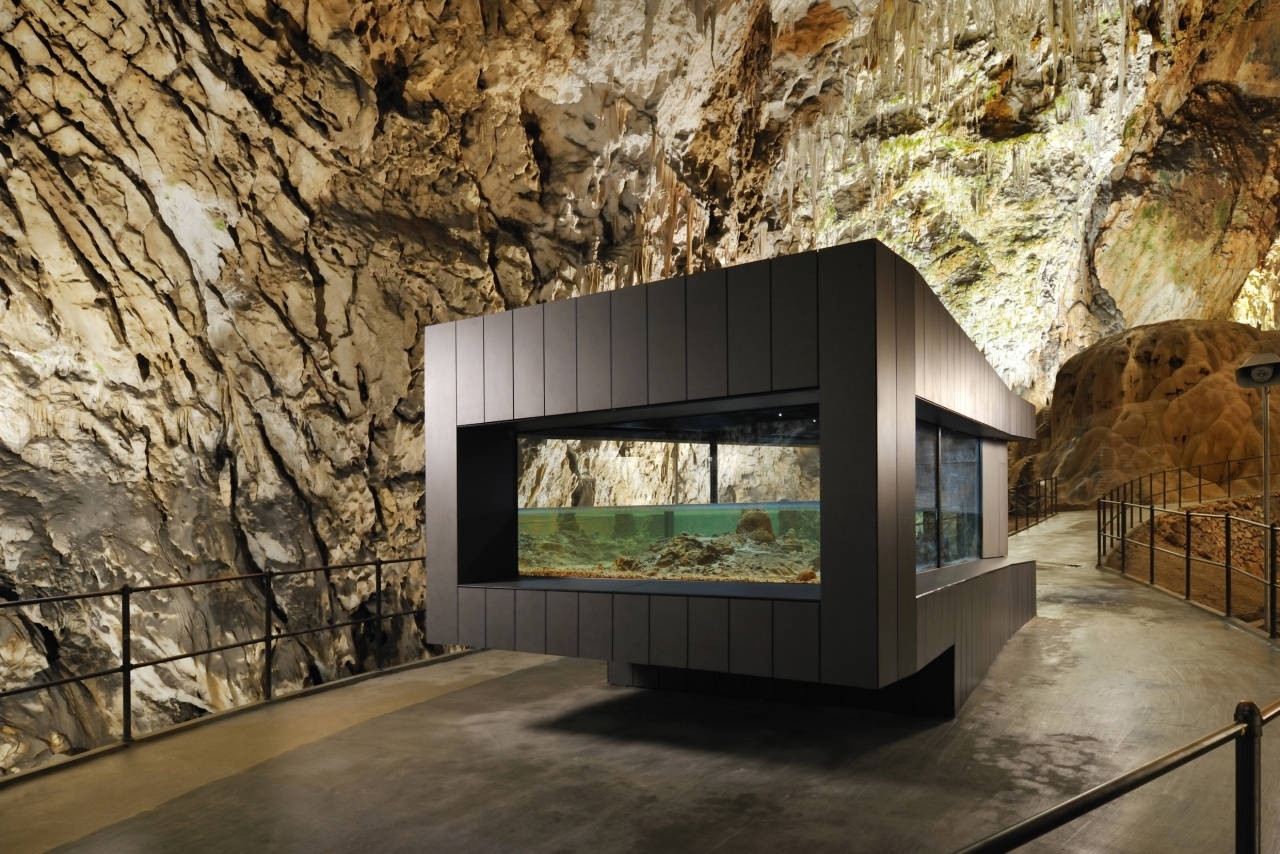 Human Fish Pool in the Postojna Cave / Studio Stratum, © Miran Kambič