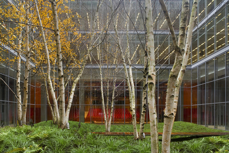 The New York Times Building Lobby Garden Hm White Site Architects Cornelia Oberlander Architects Archdaily